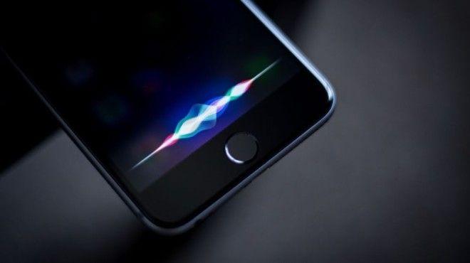 8 Они любят подшучивать над Siri apple люди мир особенность пользователь устройство факт