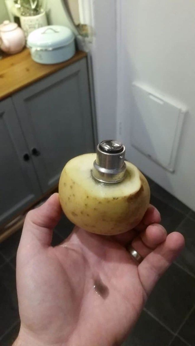 Props To My Wife For A Life Hack That Totally Worked. Removing A Broken Light Bulb With A Potato