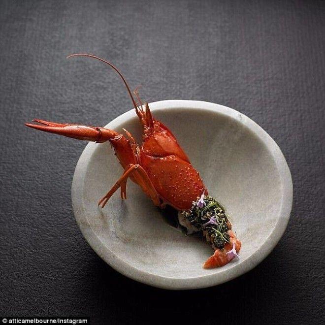 Attica Австралийский рак с кислосладкими семенами тыквы льняным семенем и цветами тульбагии фиолетовой австралия блюда еда еда в Австралии лучшие ресторан рестораны