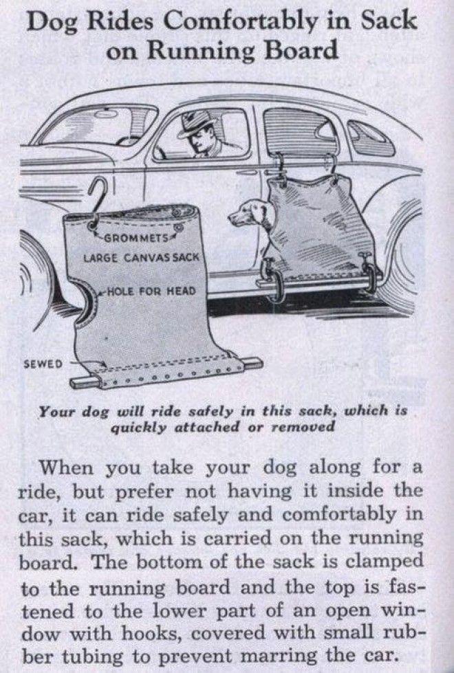 В такой переноске собака не испачкает машину лапами и не подерет когтями обивку сиденья! бред изобретателя, ненужное, оригинально, смешно, странные вещи, странные люди, товар, юмор