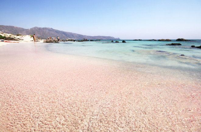 Розовый пляж Харбор