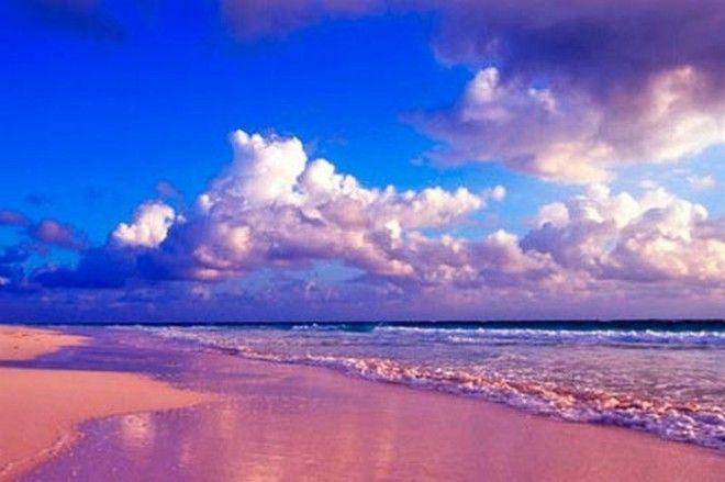 Розовый пляж ГрейтСантаКруз