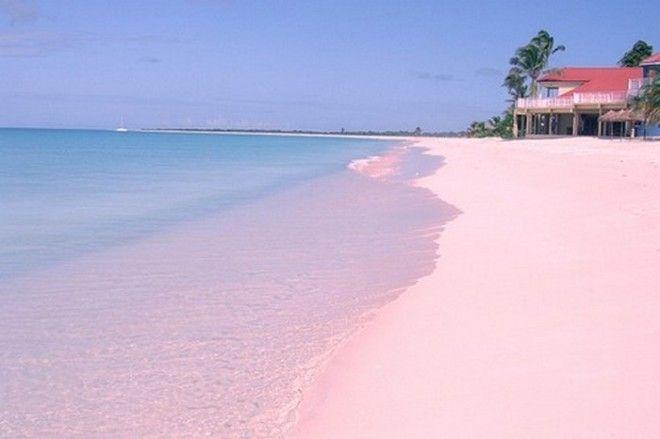Розовый пляж Барбуды