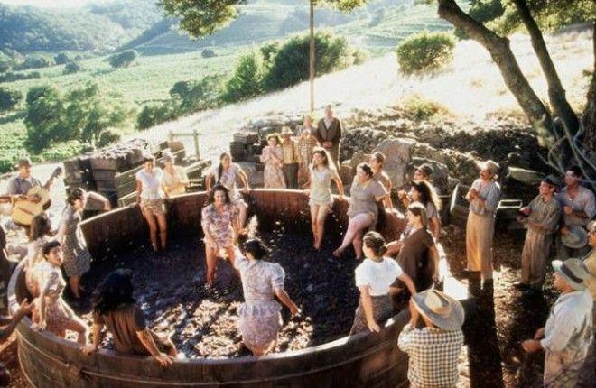 S7 фильмов до краев наполненных солнцем и виномкоторые сделают день лучше