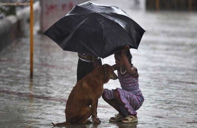 Картинки по запросу kindness