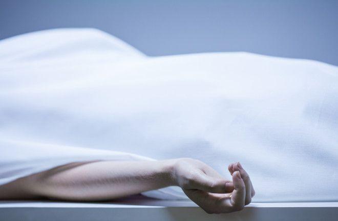 Эффект Лазаря. Четыре истории о людях, которые пытались воскрешать мертвых