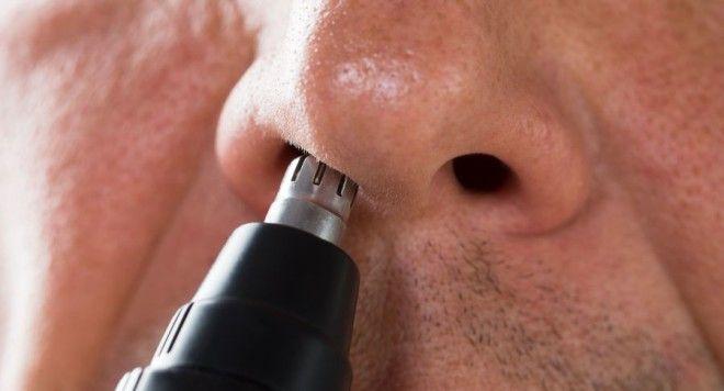 Картинки по запросу Опасно выщипывать волосы из носа