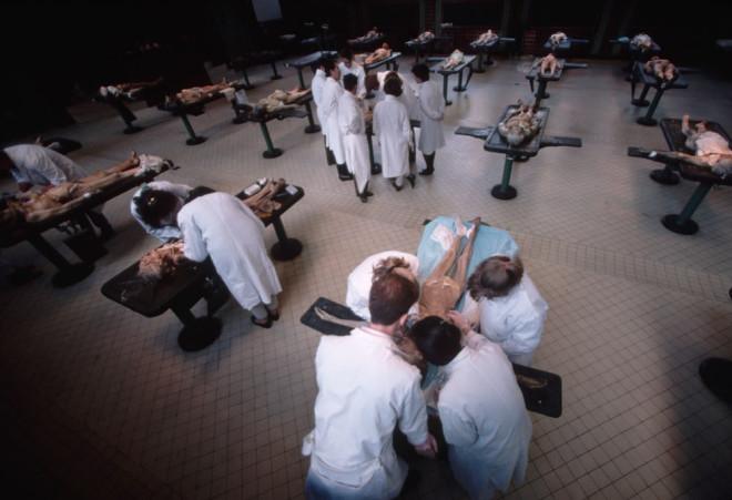 «Мой труп не сгниет напрасно!», или что будет с вами после смерти, если вы решите завещать свое тело науке?