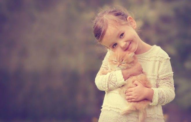Картинки по запросу девочка и котенок