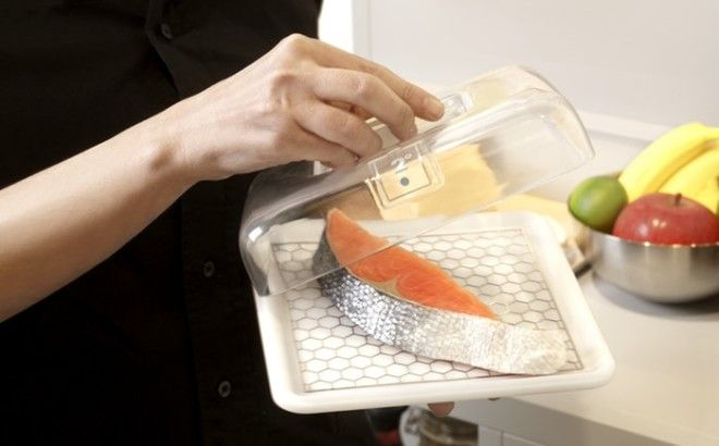 Этот кусок рыбы находился в охлаждающем контейнере с температурой 2 градуса по Цельсию