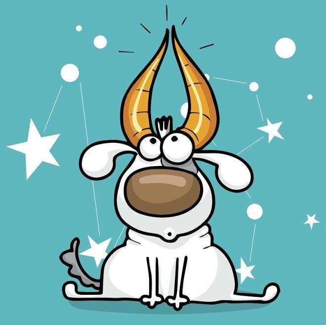 Что принесет Желтая Собака гороскоп на 2018 год для каждого знака зодиака