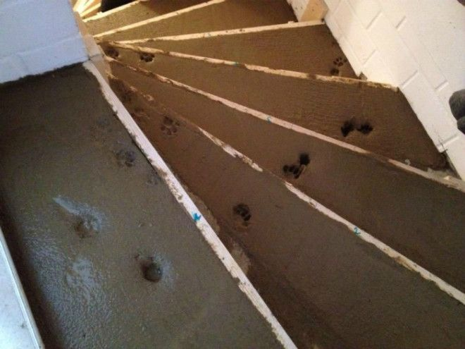 Следы на свежем бетоне