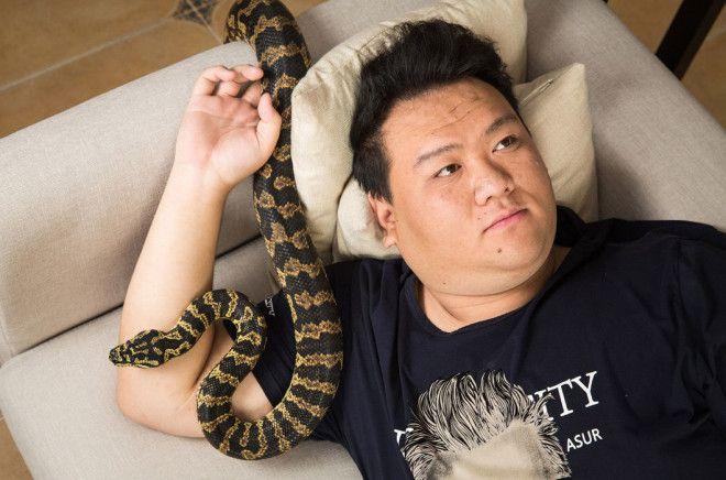 Экзотические домашние животные китайцев