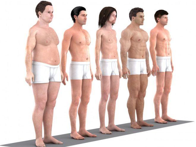 BЭволюция идеального мужского тела