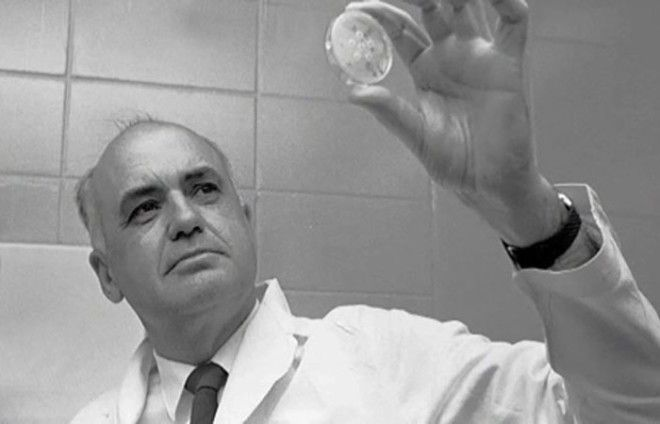 Американский микробиолог Морис Ральф Хиллеман