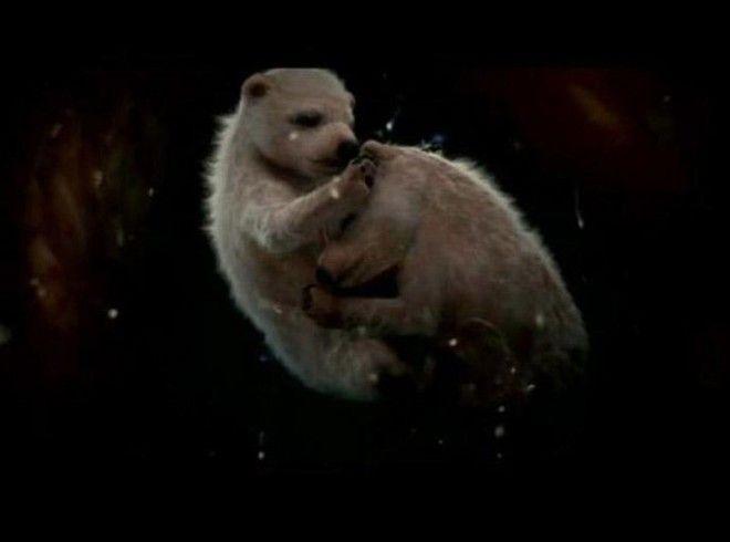 BУникальные кадры которые показывают как выглядят животные в утробе матери