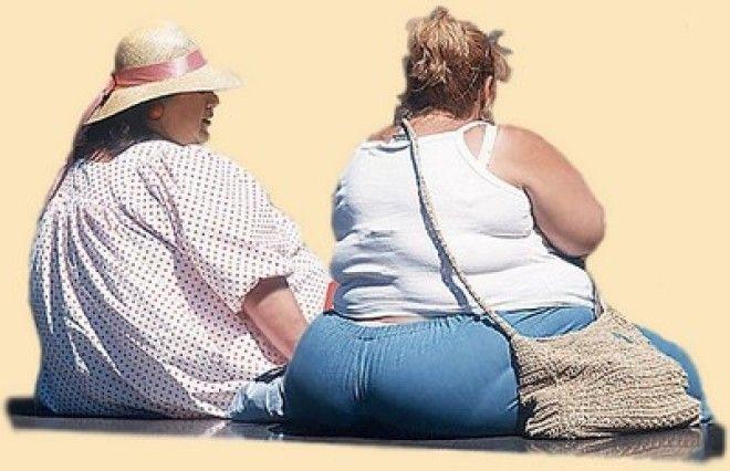 Картинки по запросу жир