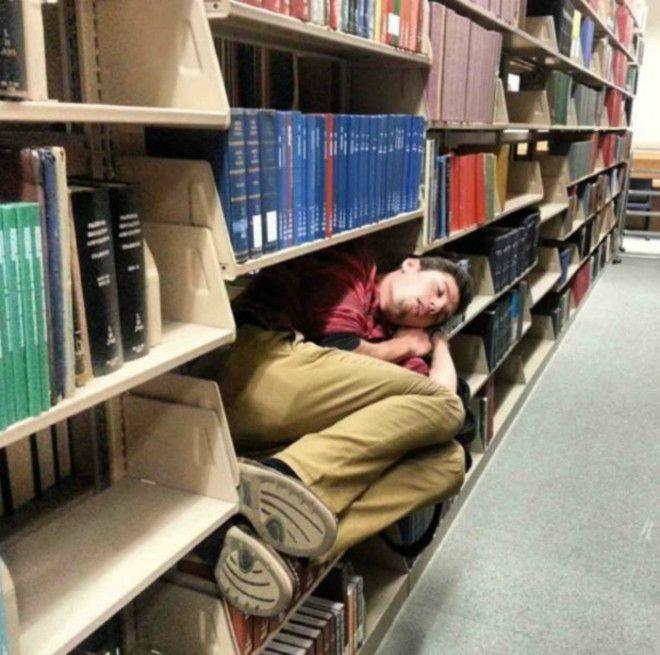 Спать в библиотеке