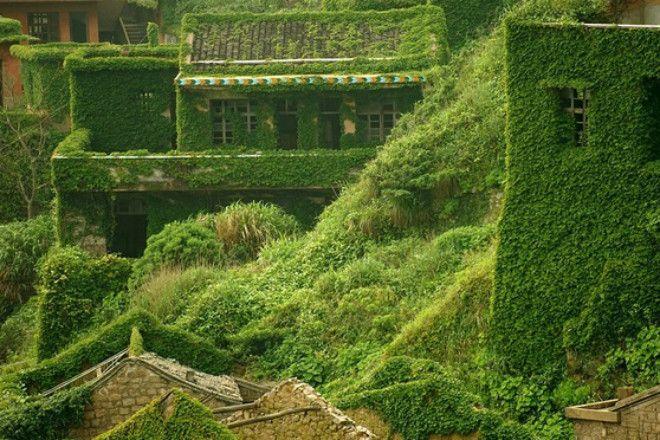 Заброшенная деревня, поглощенная природой