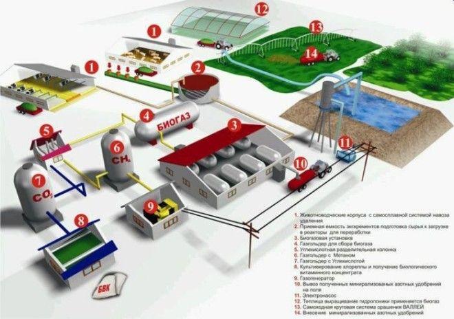 Биогаз из биомасс