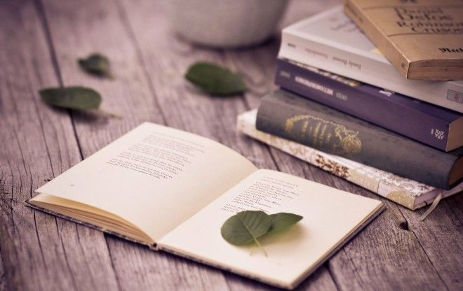 Картинки по запросу 10 книг, которые учат никогда не сдаваться