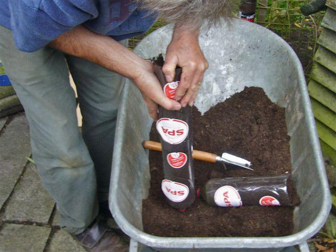 Заполнили почвой
