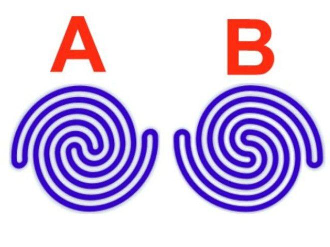 оптические иллюзии загадки закрученные загадки мозговые дразнилки дразнилки для мозга