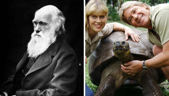В 2006 году умерла черепаха которая лично встречалась с Чарльзом Дарвином
