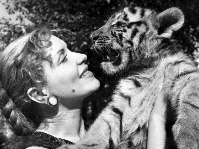 Своих тигров Назарова обожала