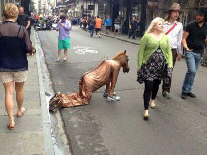 Правду говорят остались только кони