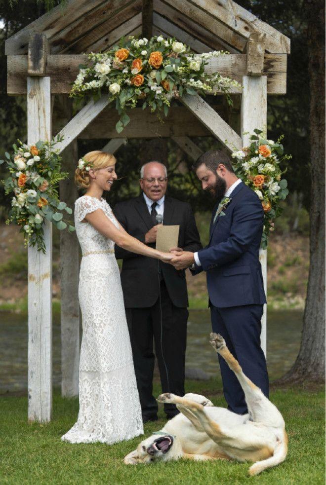 Безудержное веселье Фото Weddings Today