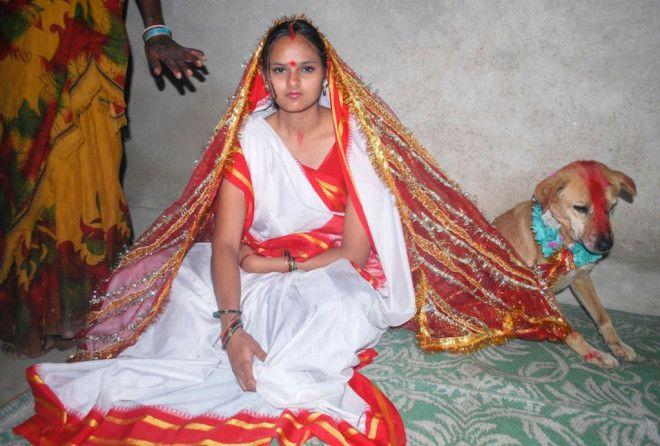 SСуеверная Индия зачем девушку выдают замуж за собаку
