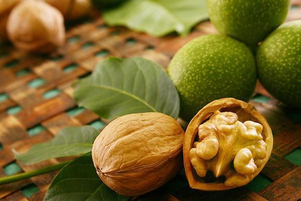 Лечение настойкой грецкого ореха