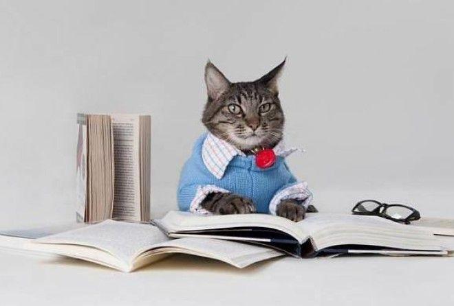 Еще одна причина любить книги!
