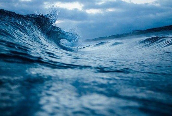 Океан скрывает в себе удивительные вещи!