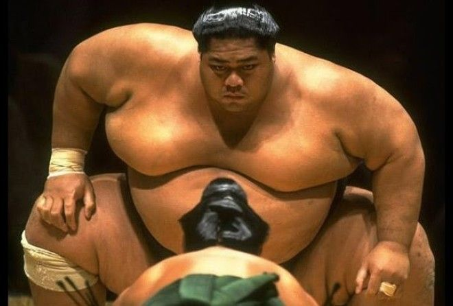 Если он твердый, это не означает, что это огромная мышца...