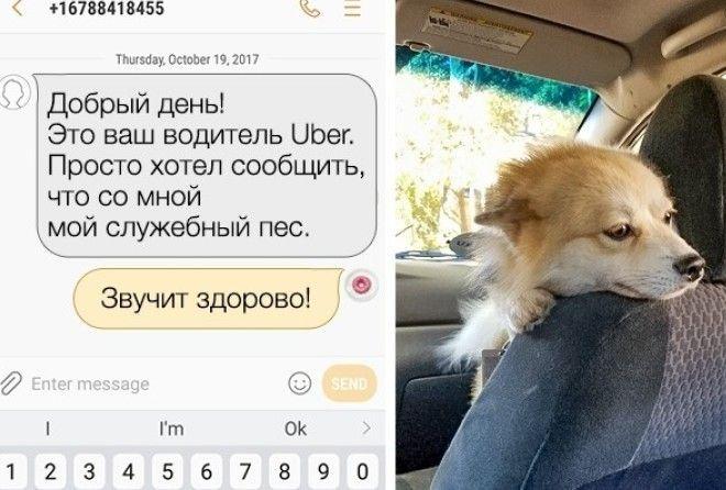 Теперь ты будешь мечтать о таком таксисте! :-)
