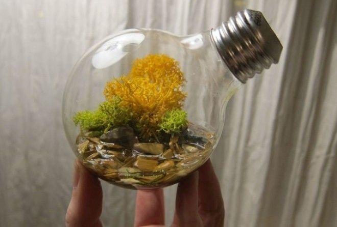 Прекрасные идеи!