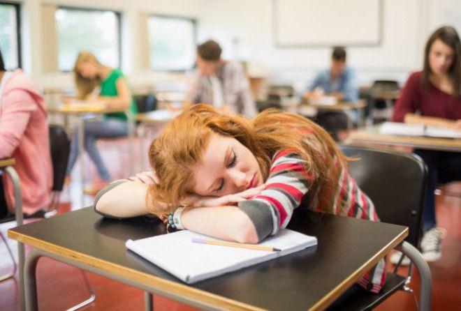 Самые распространенные мифы про сон!